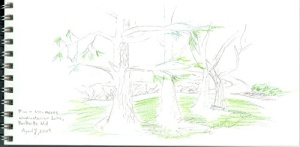 A quick sketch for Project Spectrum in a park