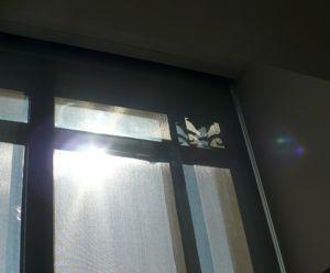 Perleman window