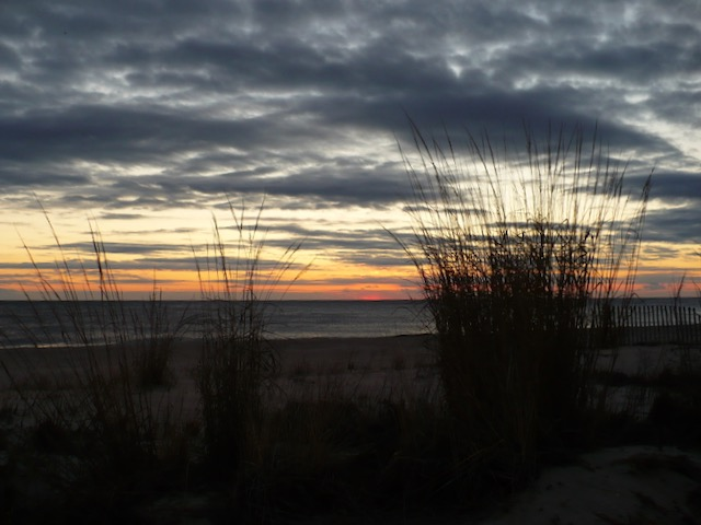 Photograph of an ocean sunrise, with orange sun low on the horizon, grey clouds in the sky, and beach grasses in the foreground.